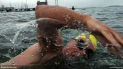 2012_09_22--Boston_Sharkfest_Swim--swimmer_03--M_014058--(PlaySport--100_0003)--now_720v--wmarked